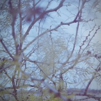 Espio 35 70 Lomo Color 1004©JamesECockroft 20141221