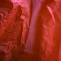 20160123 1612 red plastic bag ©JamesECockroft 3075