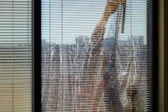 washing windows 4