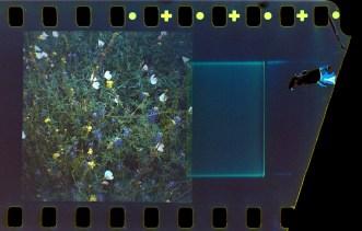 Film End