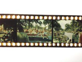 FPP Retrochrome 500, Nikon FE, 35mm f/2 D