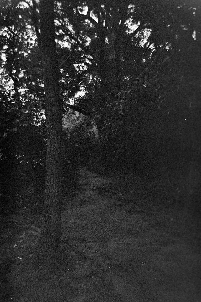 Harman-Black-White-camera-test-3