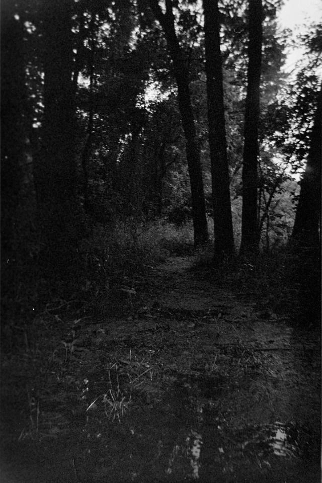 Harman-Black-White-camera-test-5