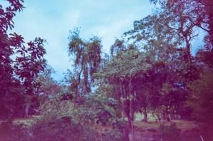 Costa Rica 3_©JamesECockroft_2015030154