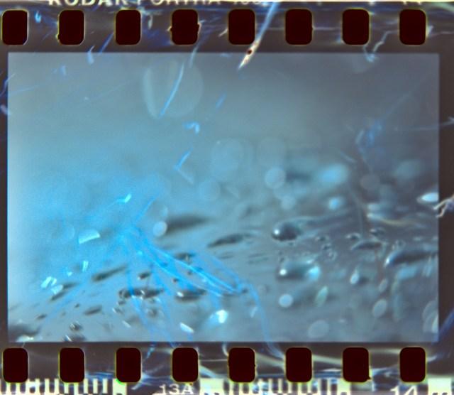 Lens Tests16©JamesECockroft 20150426 darktable1