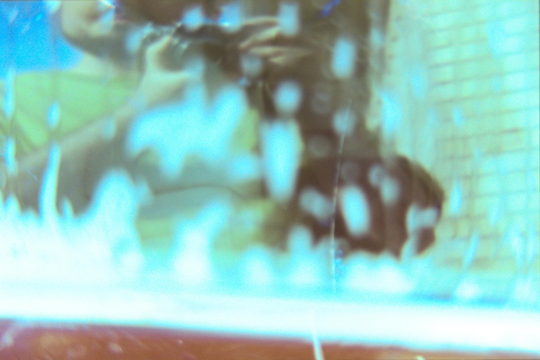 Lens Tests18©JamesECockroft 20150426