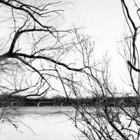 White Rock Lake Tri X36©JamesECockroft 20130405