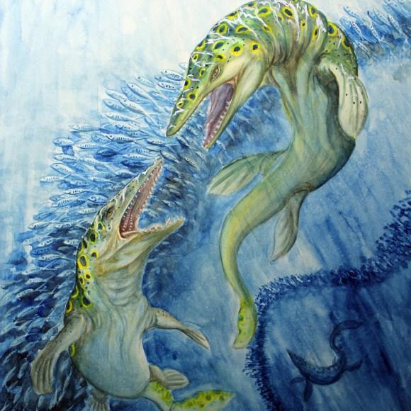 "Tylosaurus 16x20"" $20.00 USD [wpepsc name=""Tylosaurus 16x20"" Print"" price=""20.00"" align=""center""]"