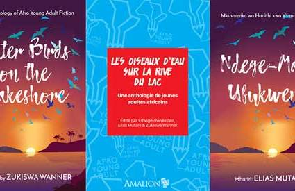 Goethe-Institut's AfroYoungAdult anthology to launch at Ake Book Festival 2019.