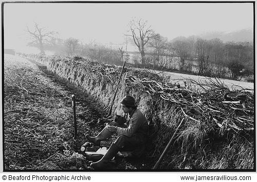Stephen Squire, hedger, taking a tea-break