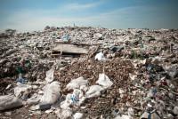 Los Angeles Bans Plastic Bags