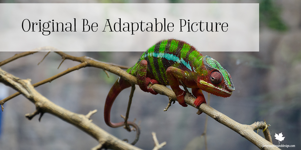 Be Adaptable – Part 1