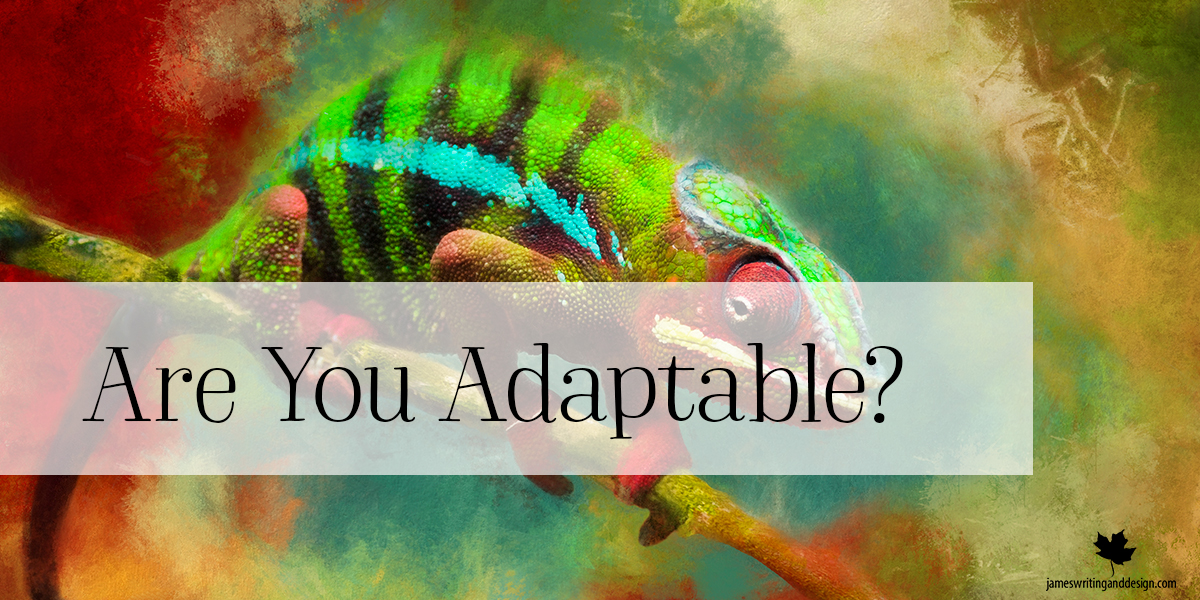 Be Adaptable – Part 2