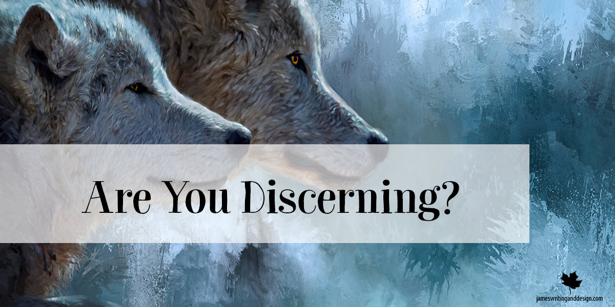 Discerning…You And The Wolf
