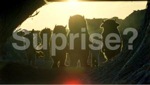 Surprise film