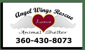AngelWingsLogowebsite