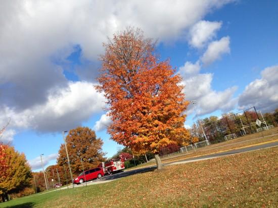 Fall 2013