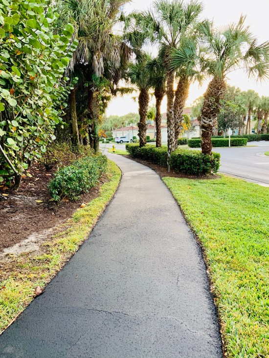 A Florida bike path