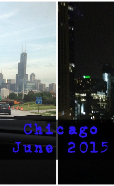 Chicago Trip – June 2015