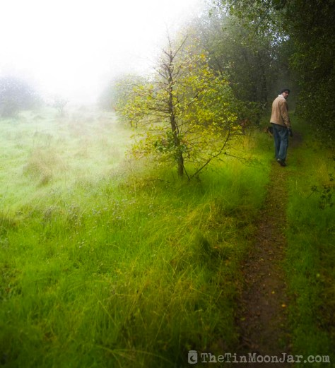 Fog and man on a spooky trail