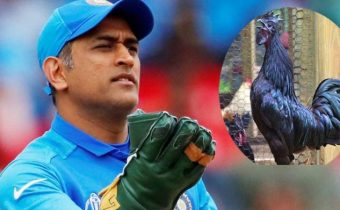MP's black chicken variety Kadaknath wins over Captain Cool MS Dhoni