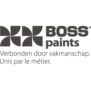 Vacature HR directeur BOSS paints