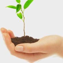 Van waar haal je de krachtigste persoonlijke energie om ecologisch en maatschappelijk te ondernemen?