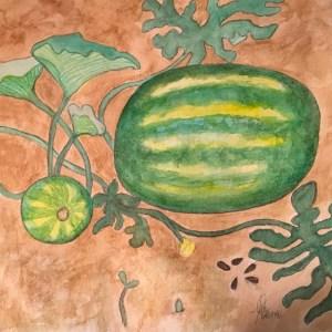 watermelon-illustration