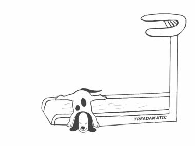 DogUsingTreadmill