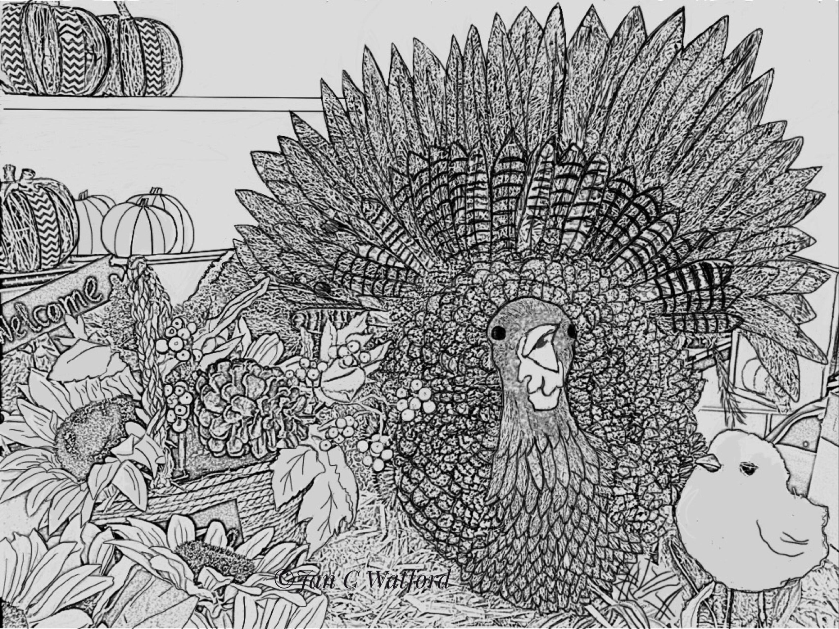 harvest vegetables coloring page printable digital download