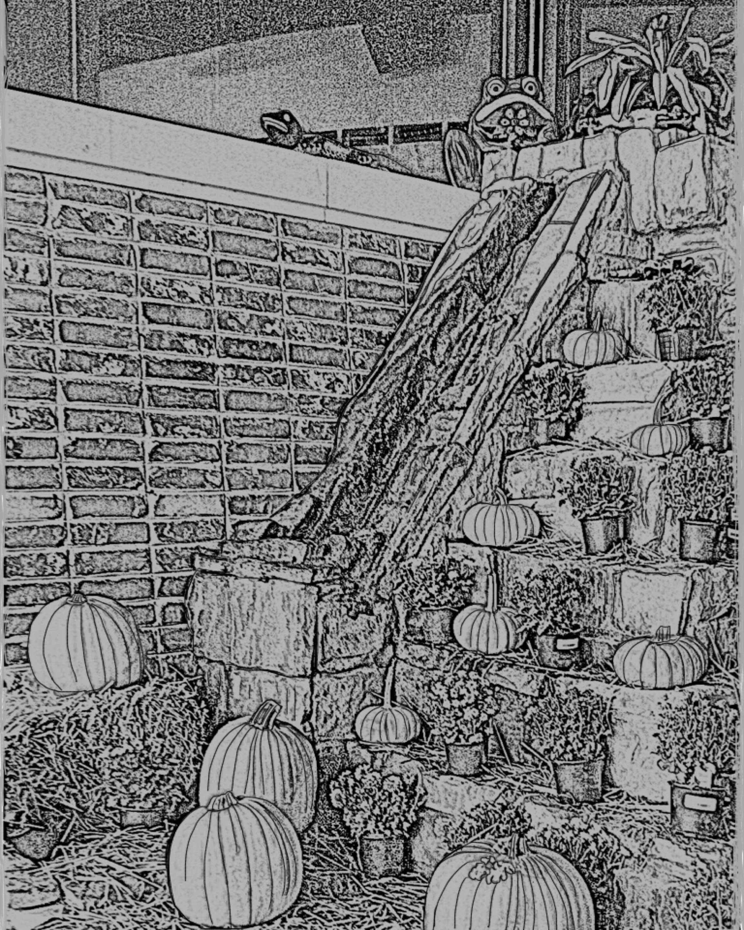 pumpkin waterfall coloring pages gray scale digital download