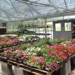 garden center-https://www.jandnfeedandseed.com