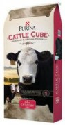 cattlecube