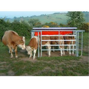 Cattle Corner tips-https://www.jandnfeedandseed.com