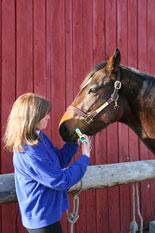 equine health deworming- https://www.jandnfeedandseed.com