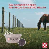 Pick up Purina EquiTub supplement with ClariFly & say goodbye to flies, and hello to gastric health + optimal body condition.