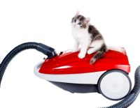 The Best Vacuums for Pet Hair - J&R Carpet Cleaning
