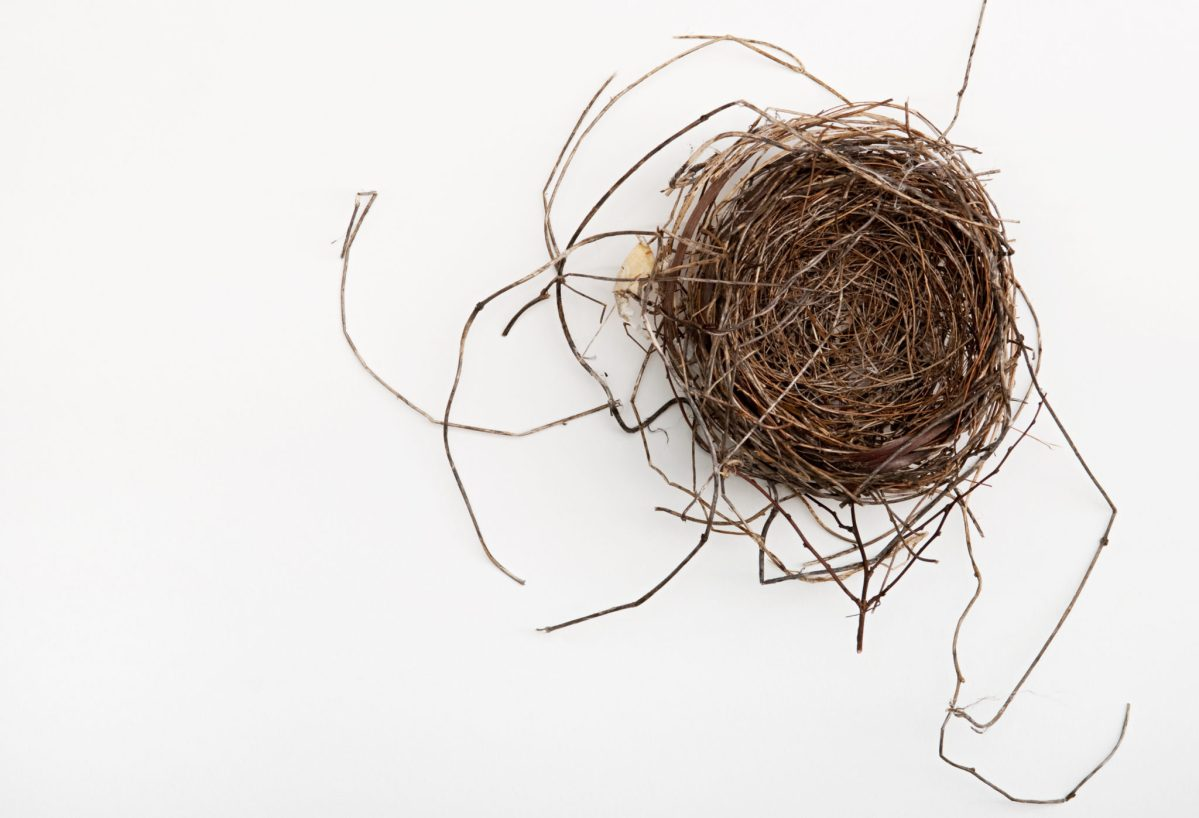 Empty nest? 30 things to do after the kids leave home