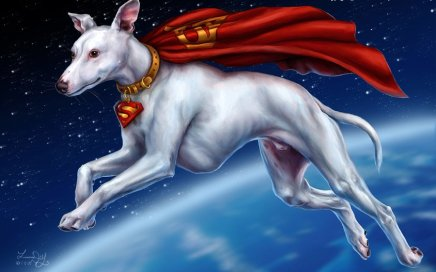 Superdog by Laura Diehl