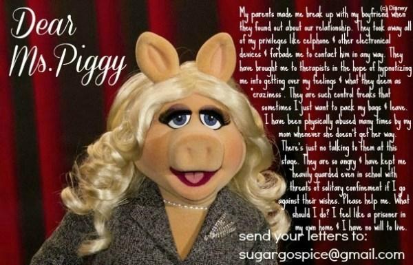 dear_poggy5