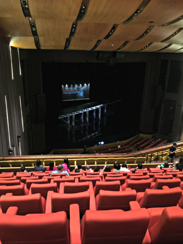 Saturday-Night-Fever-musical-solaire-07
