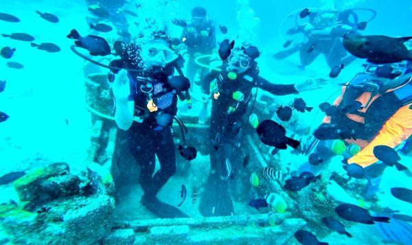 padi-diving-31