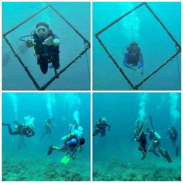 padi-diving-xx