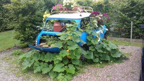 Garden in a Mini