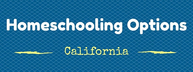 Homeschooling Options (1)