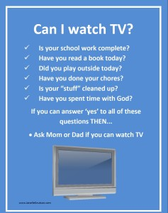 Can I Watch TV image