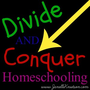 divide and conquer homeschooling, JanelleKnutson.com