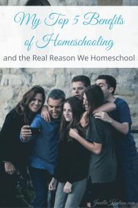 My Top 5 Benefits of Homeschooling