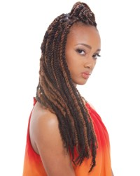 Janet Collection Noir Premium Synthetic Hair Afro Twist ...