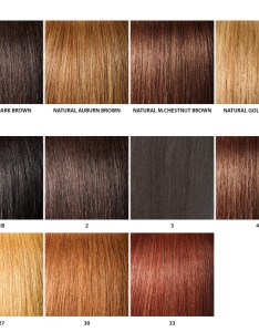 Basic  natural colors also color chart rh janetcollection